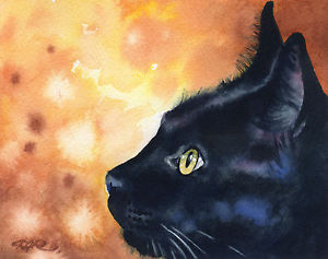 300x237 Black Cat Watercolor Painting 8 X 10 Art Print Signed By Artist