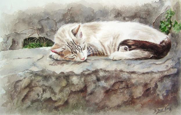 Black Cat Watercolor Paintings