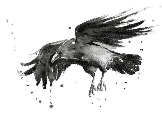 570x424 Flying Raven Watercolor Art Print, Raven Art, Raven Decor, Raven