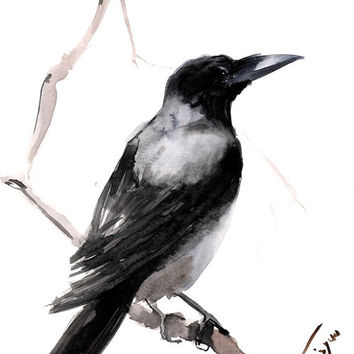 354x354 Hooded Crow, Original Watercolor From Originalonly On Etsy
