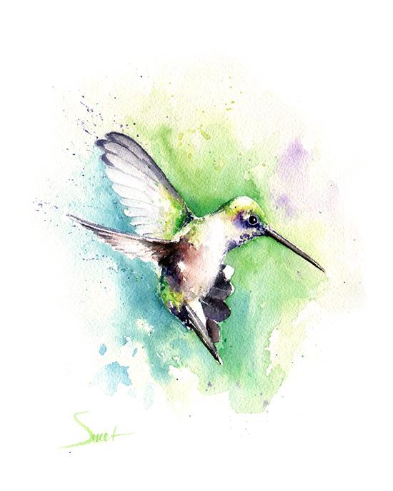 550x688 Black Chinned Hummingbird Watercolor Print Watercolor Animal