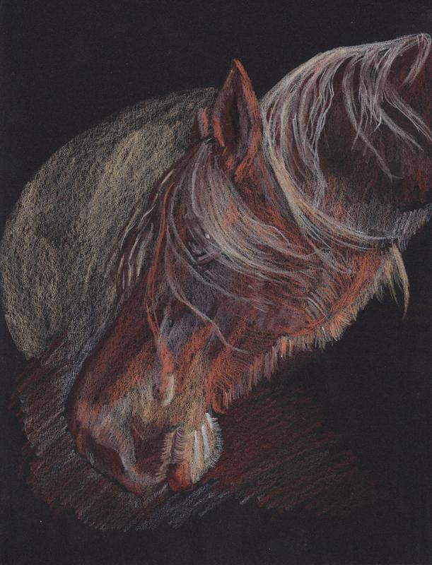 611x800 My Horses On Black Paper