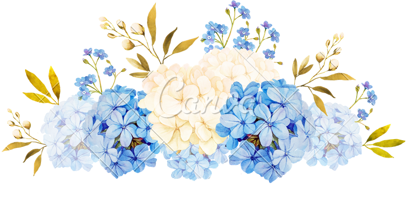 White Watercolor Flowers Png Flowers Healthy