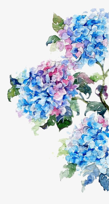 Blue Watercolor Flowers At Getdrawings Com Free For