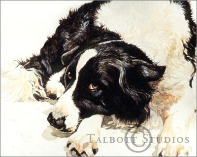 400x318 Talbott Studios Watercolor Pet Portrait Willy, Portrait Of A