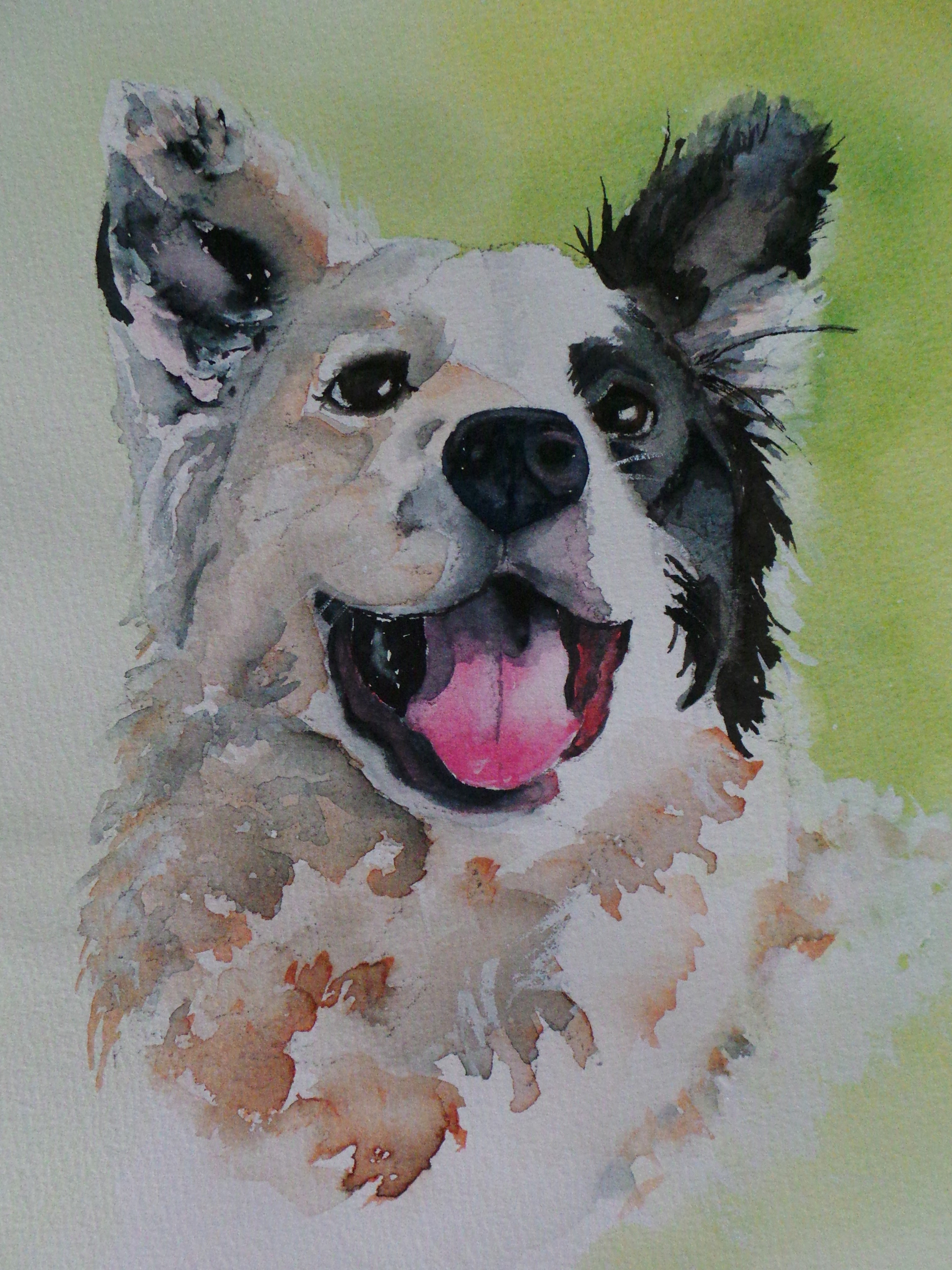3022x4032 Watercolor Paintings Of Dogs Watercolor Paintings Of Dogs Border