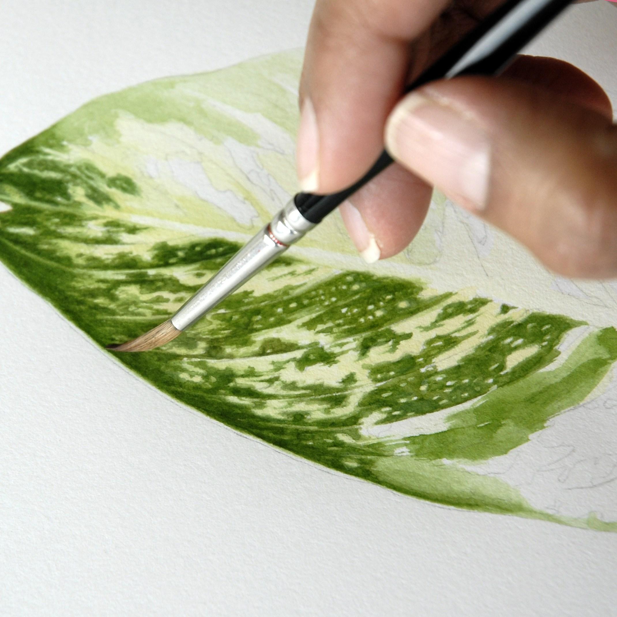 2140x2140 Nancy Snyder Painting Hand My Chicago Botanic Garden