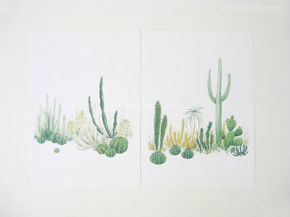 570x428 Cactus Watercolor Print Set Any Two Cactus Art Cactus Print Etsy
