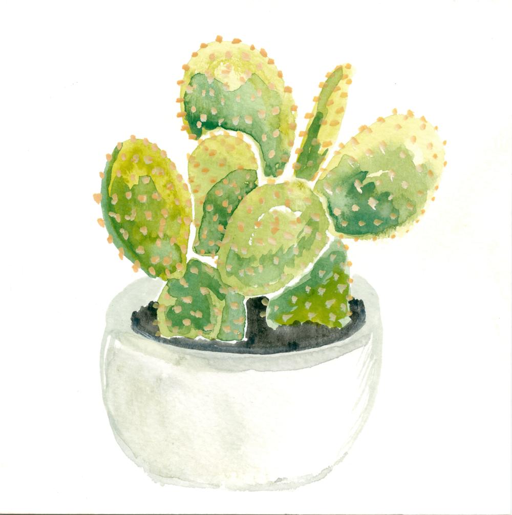 1000x1005 Drive By Cactus Print Frances Marin