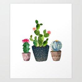 264x264 Watercolor Cacti Art Prints Society6