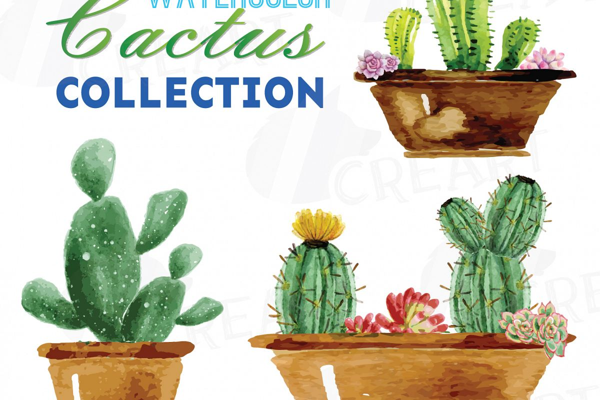 1200x800 Watercolor Cactus And Watercolor Succulent Clipart Pack, Green