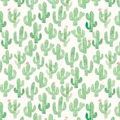 173x173 Watercolor Cactus Fabric, Wallpaper Amp Gift Wrap