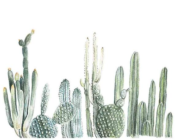 570x456 Cactus Row No 1 Art Print