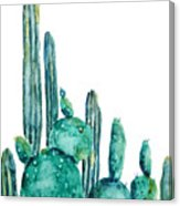 163x186 Cactus Watercolor 1 Painting By Color Color