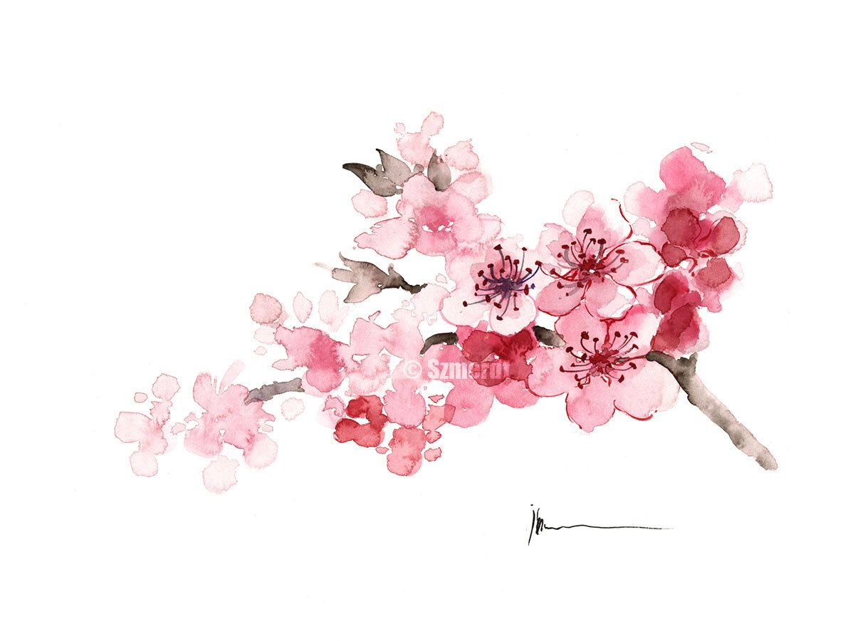 1191x900 Cherry Blossom Painting Pink Tree Blooming Branch, Watercolor Card