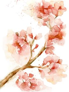 236x314 37 Best Cherry Blossom Painting Images Cherry