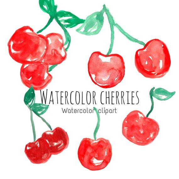 570x570 Watercolor Cherry Clip Art Watercolor Art Watercolor Fruit Etsy