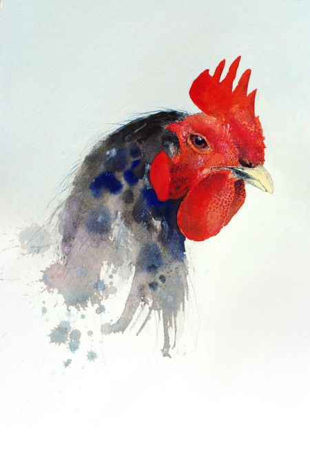450x652 Watercolor Chicken Art Watercolor Watercolor, Bird