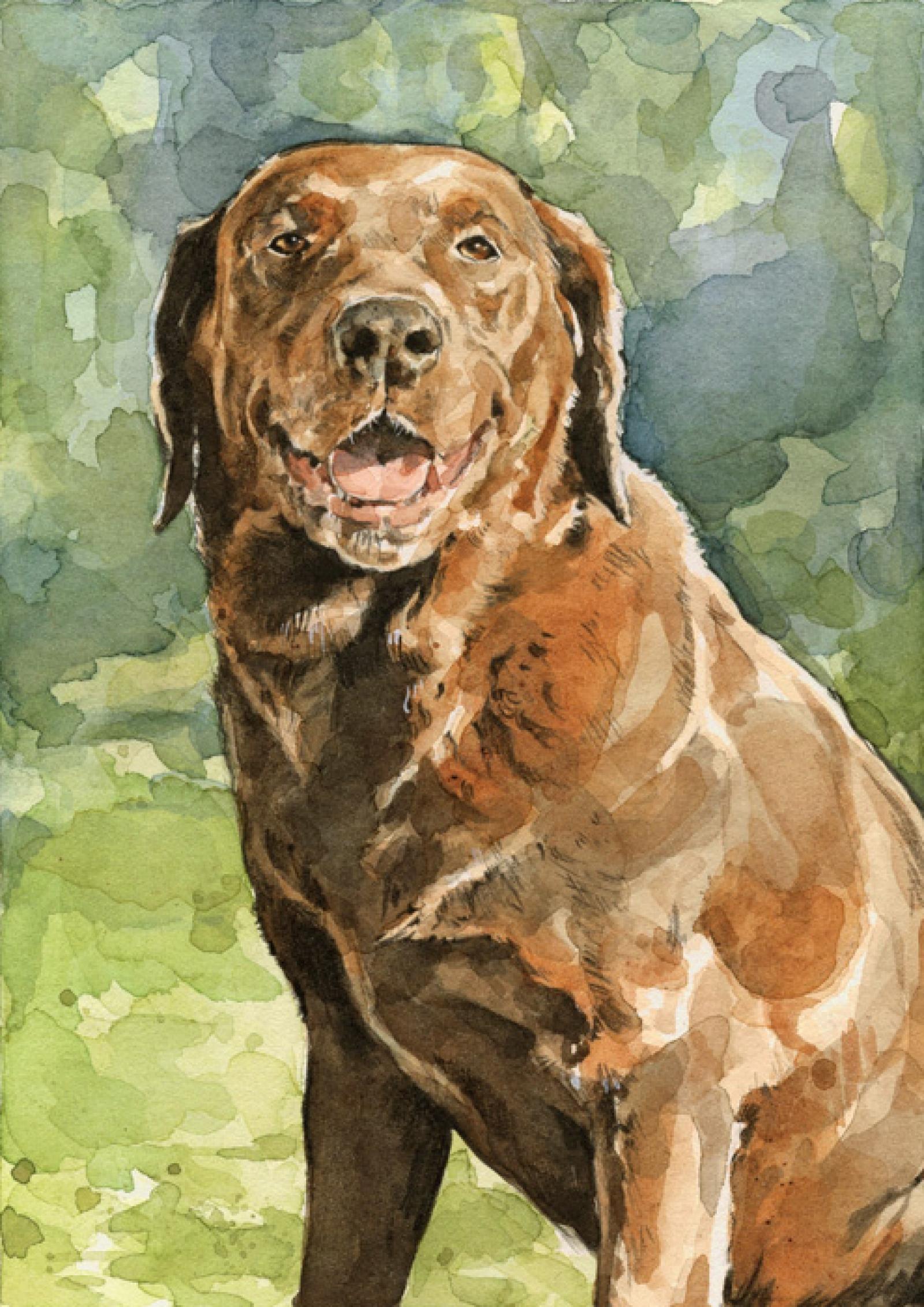 1600x2263 Custom Lab, Labrador Retriever Portrait, 8x10 Watercolor Painting