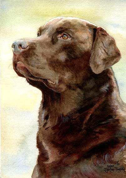 403x569 Brown Labrador By Flingling