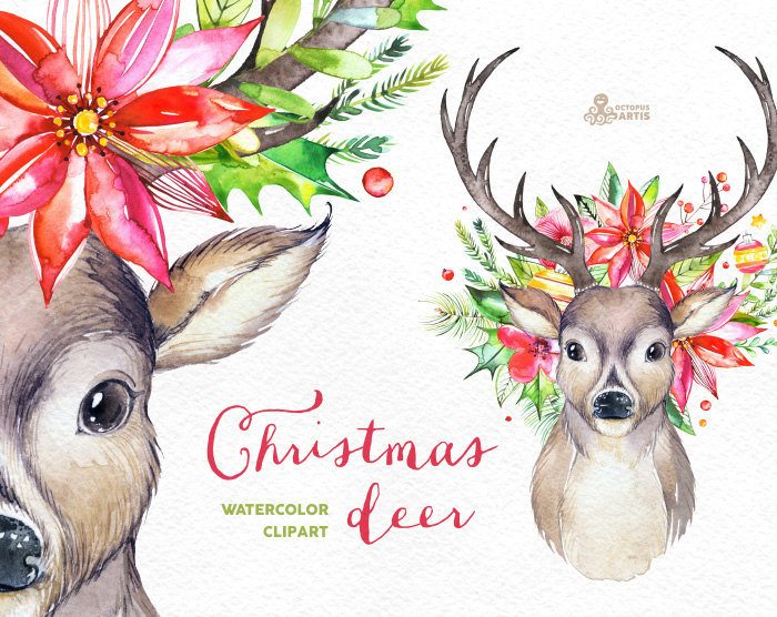 700x556 Christmas Deer. Watercolor Deers, Antlers, Flowers, Hand