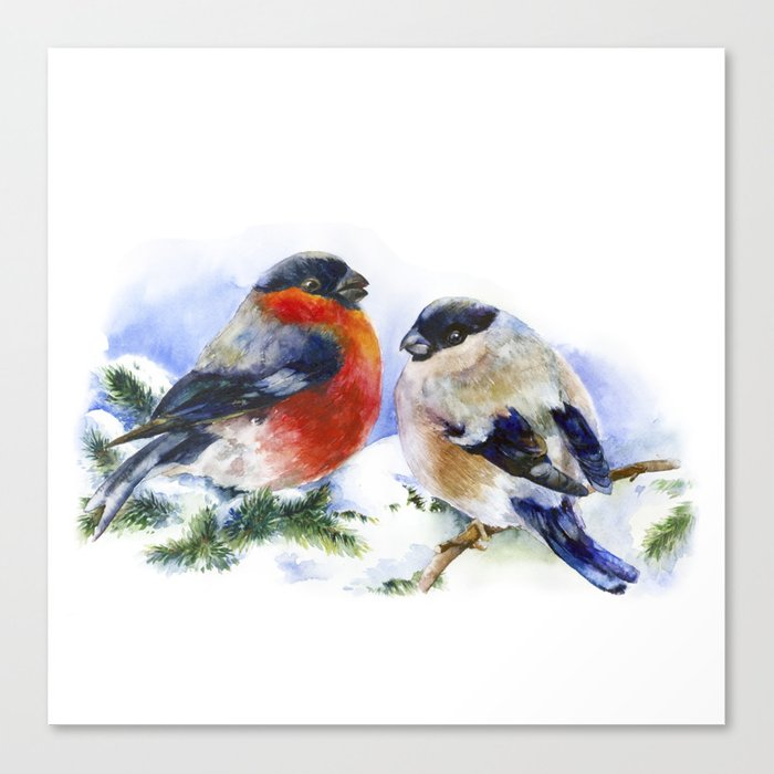700x700 Bullfinches In Winter Time. Christmas Watercolor Art Canvas Print
