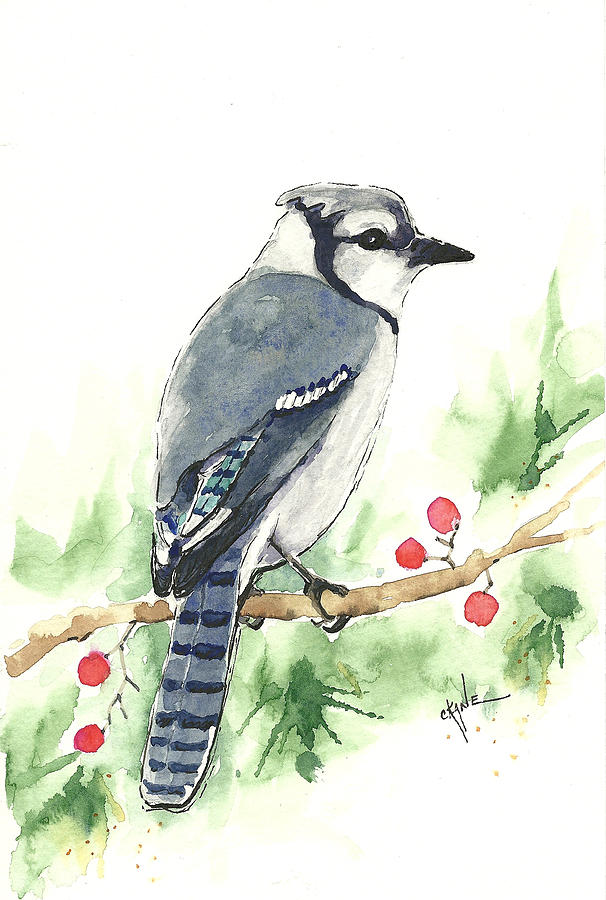 606x900 Christmas Blue Jay Painting By Christine Camp