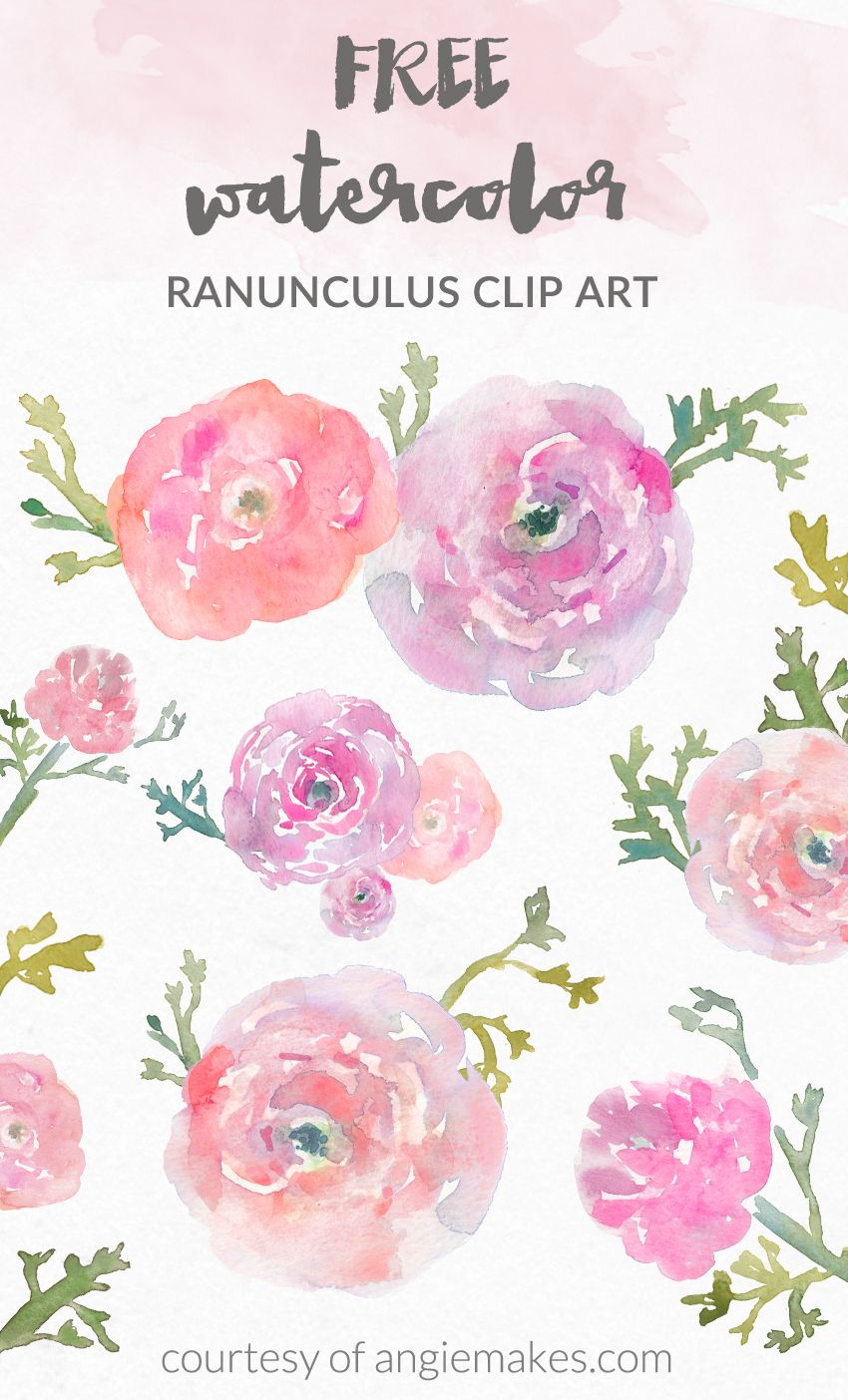 850x1404 Free Watercolor Flower Clip Art Graphic Freebies