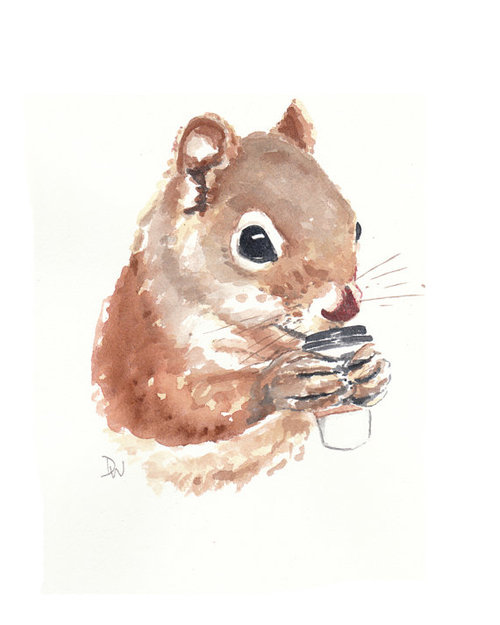 500x625 Squirrel Watercolor Painting Coffee Animal By Waterinmypaint