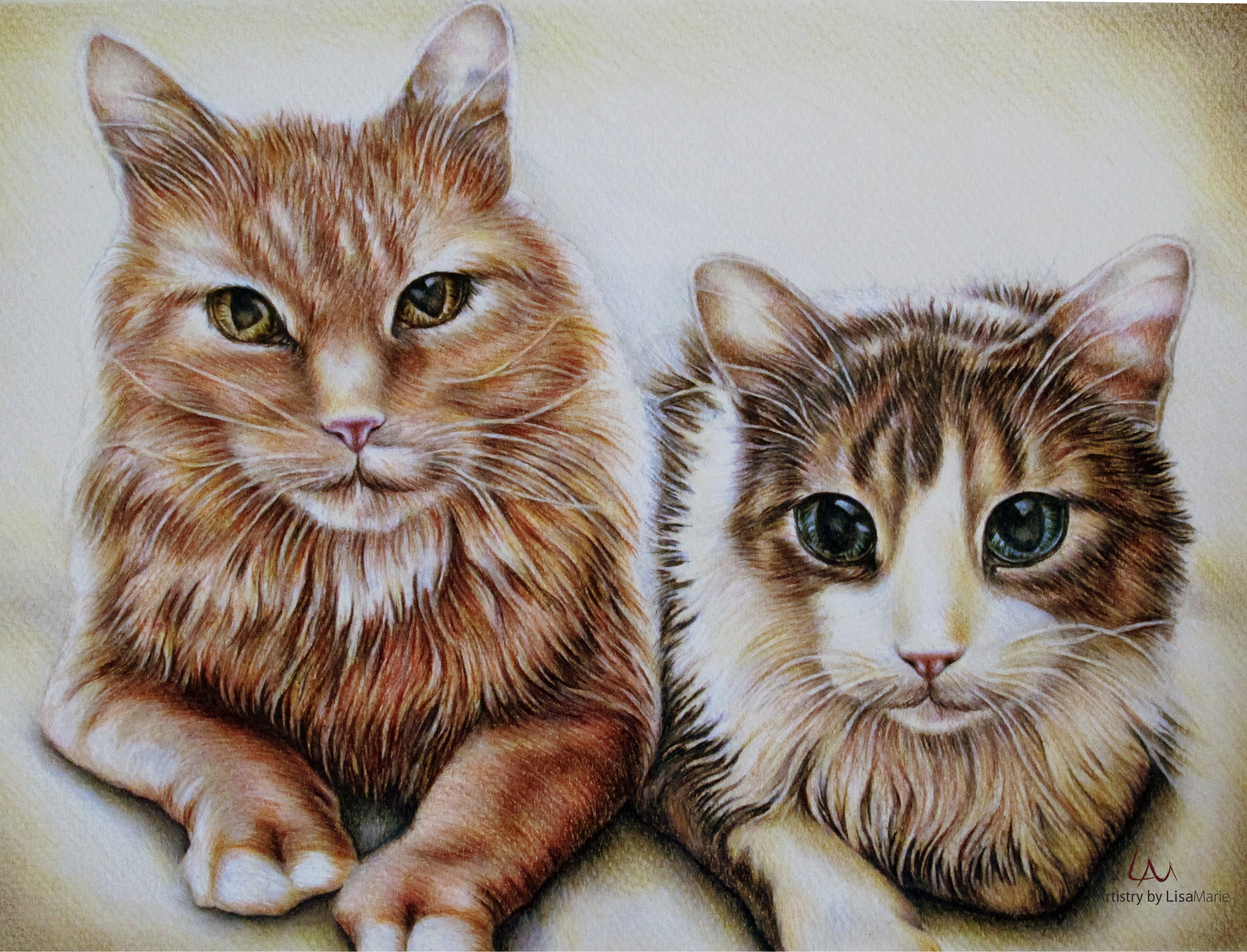 3624x2767 Cat Portraits A One Of A Kind Birthday Present Pet Portraits