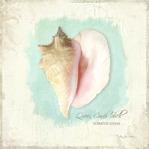 300x300 Conch Shell Paintings Fine Art America