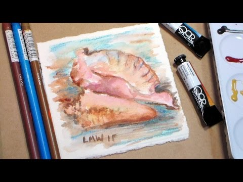 480x360 Watercolor Seashell {Conch Shell} Painting Tutorial Easy!