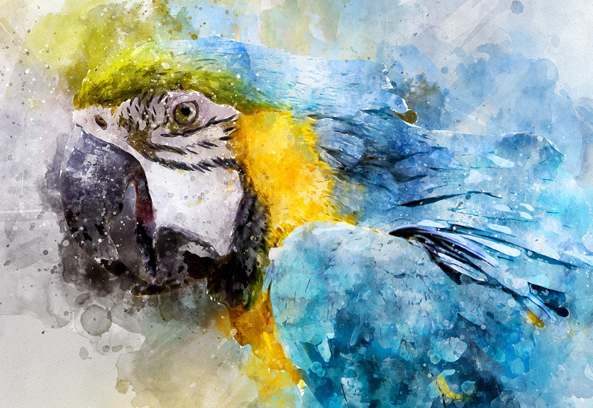 836x575 19 Artistic Watercolor Amp Sketch Painting Effect Photoshop Actions