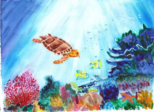 500x364 Coral Reef Art Coral Reefs, Watercolor And Paintings