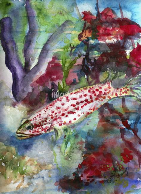 473x650 Ocean Life Coral Reef Fish Watercolor By Ginette Callaway