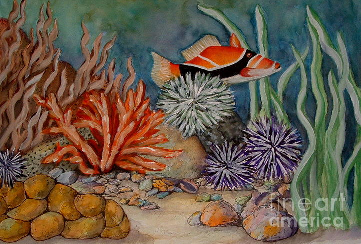 723x489 Coral Reef Painting By Barbara Oberholtzer