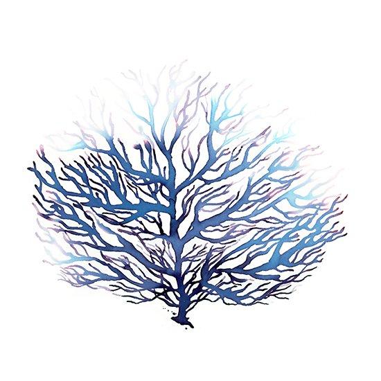 550x550 Blue Coral Watercolor Print, Ocean Art, Sea Decor Waves