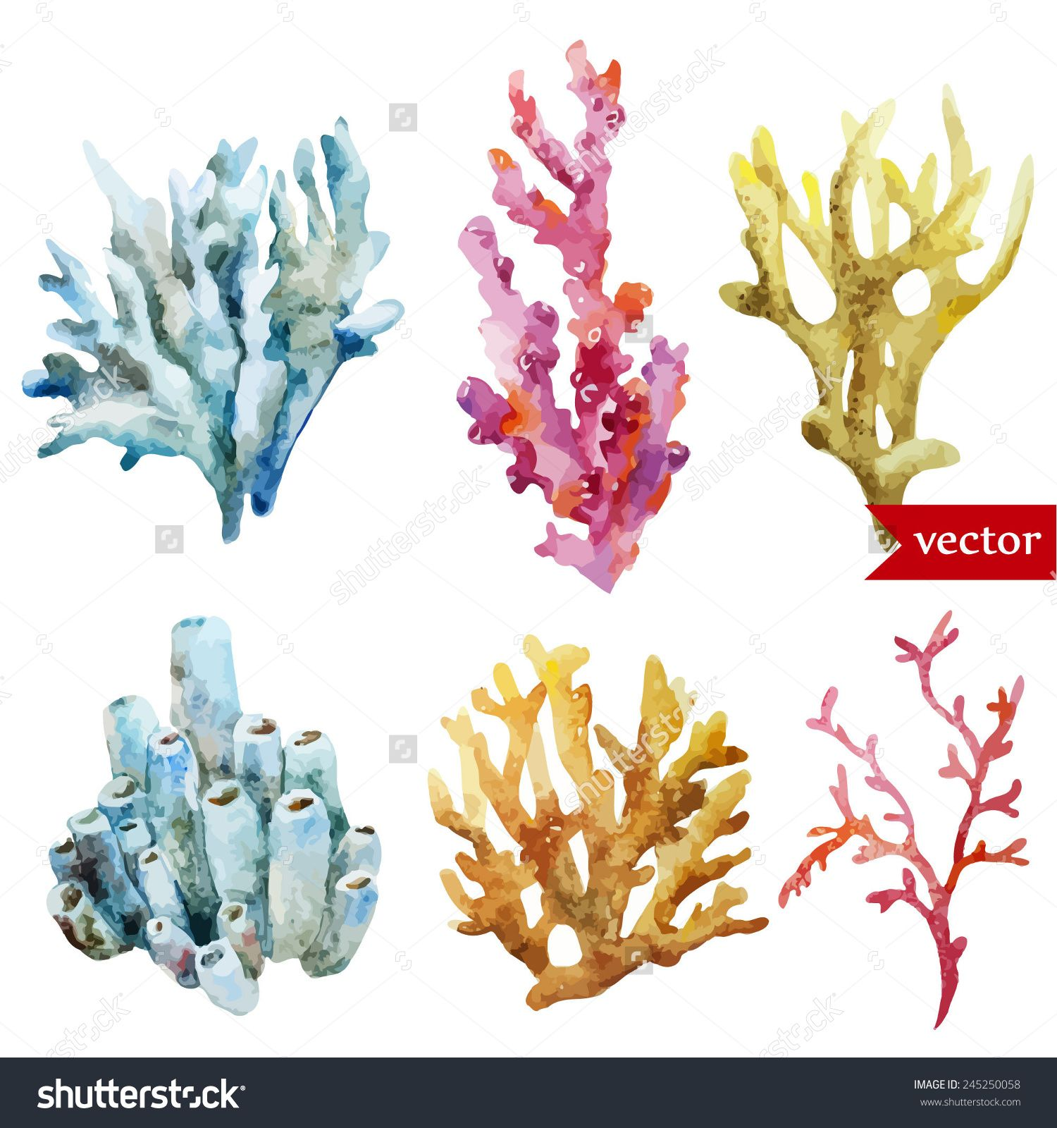 1500x1600 Coral Red Stock Vectors Amp Vector Clip Art Shutterstock Project