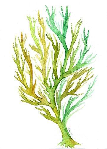 362x500 Green Sea Coral Watercolor Print Wall Art Decor No