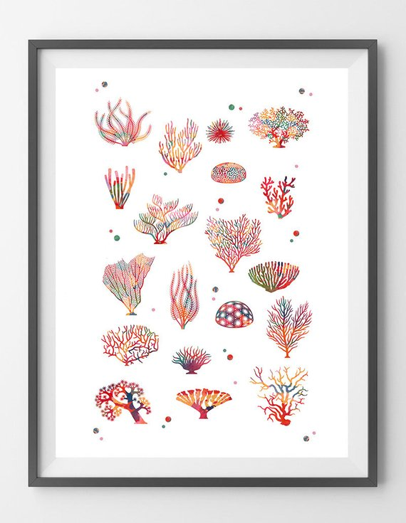 570x735 Sea Coral Watercolor Print, Sea Life Art Corals Collection Poster