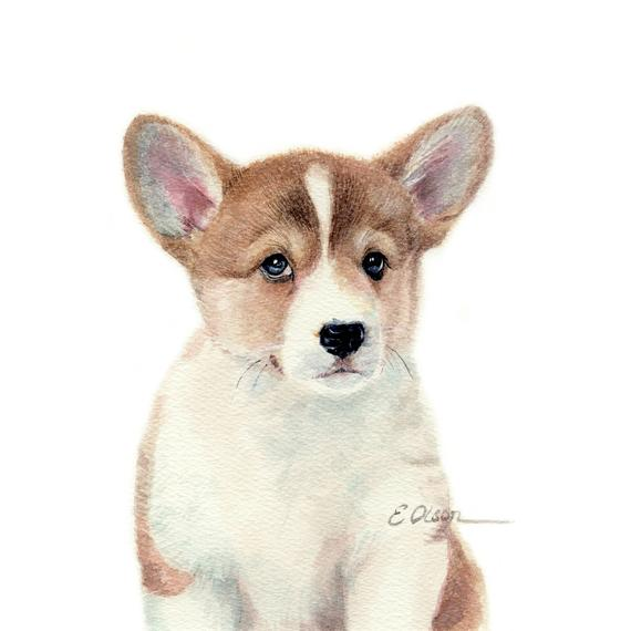 570x570 Watercolor Corgi Puppy Pembroke Welsh Corgi Watercolor