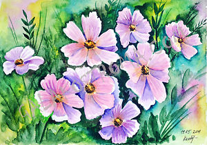 300x210 Cosmos Watercolor Original Flower Painting Nature Grass Garden