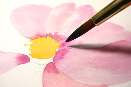 500x333 Paint Draw Paint, Learn To Draw Water Color Basics A Cosmos Flower