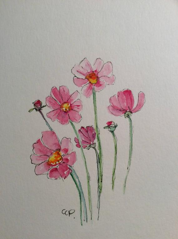 570x763 Pink Cosmos Watercolor Card Hand Painted Watercolor Card Etsy