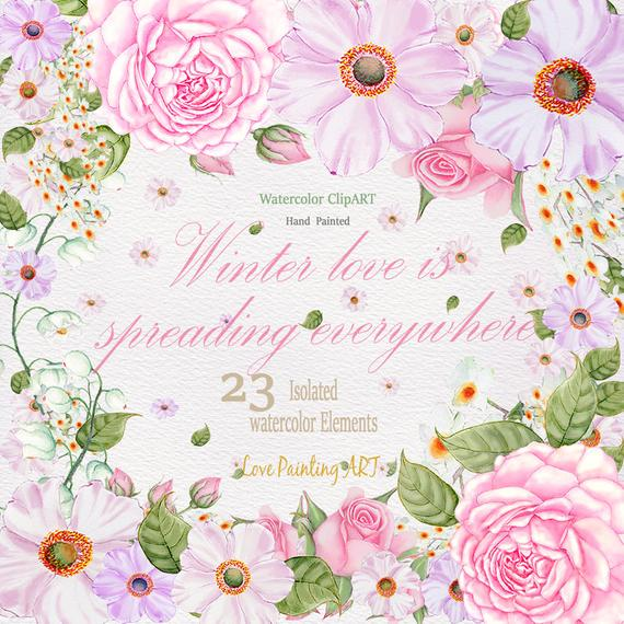 570x570 Roses Amp Cosmos Watercolor Flowers Clipart.hand Painted Etsy