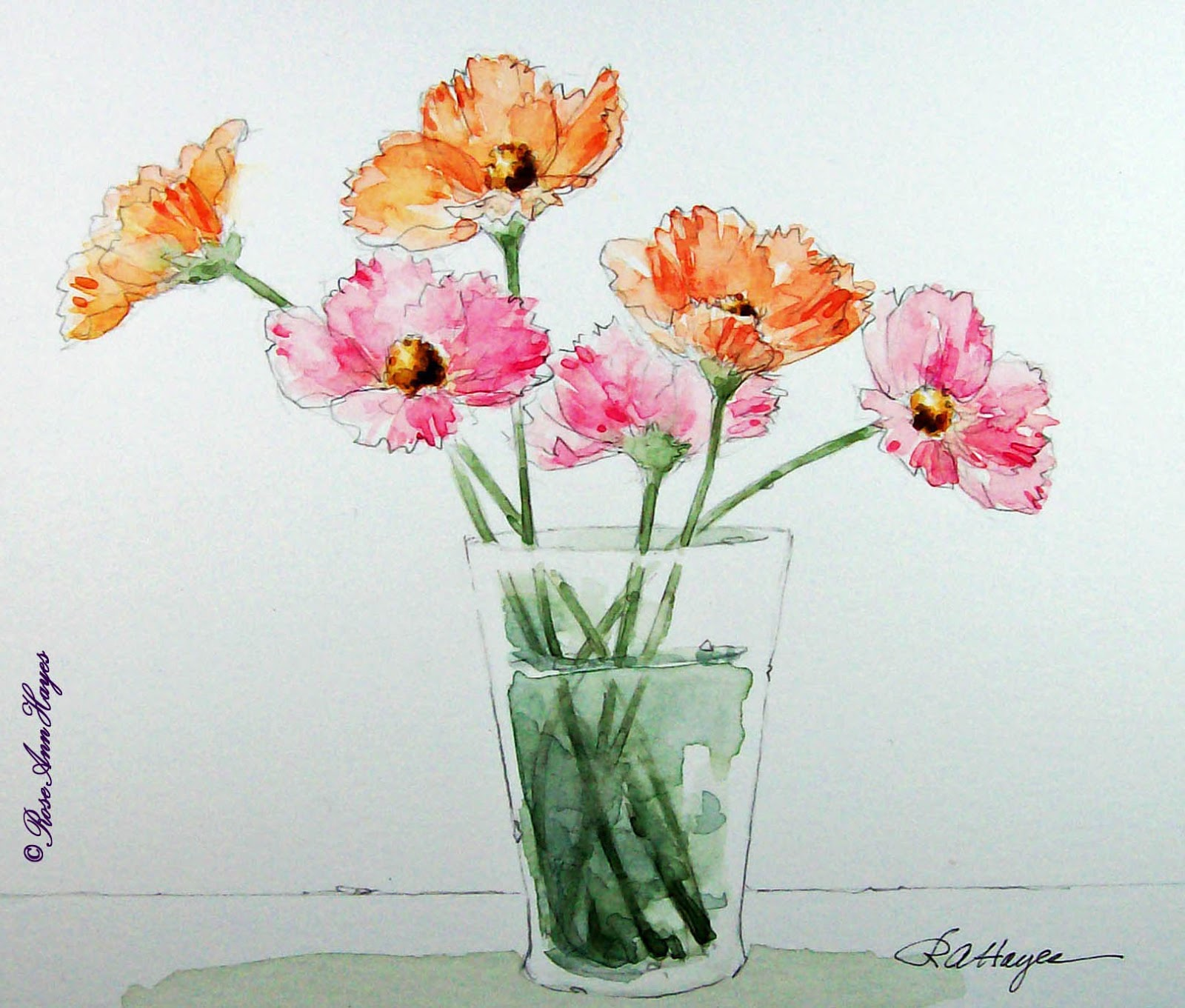 1600x1361 Watercolor Paintings By Roseann Hayes Cosmos Watercolor Painting