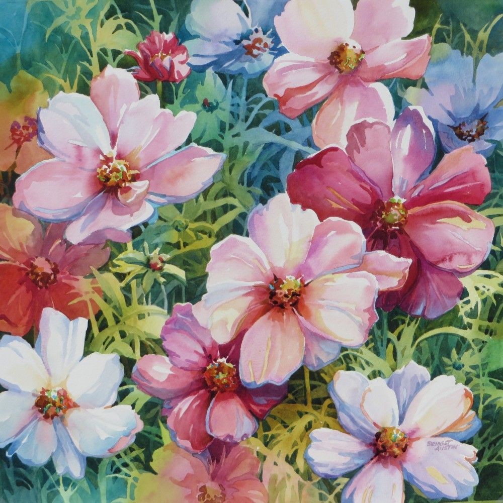 1000x1001 Cosmos Watercolor Large Floral Bridget Austin Suluboya6