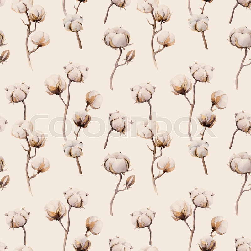 800x800 Watercolor Vintage Background With Twigs And Cotton Flowers Boho