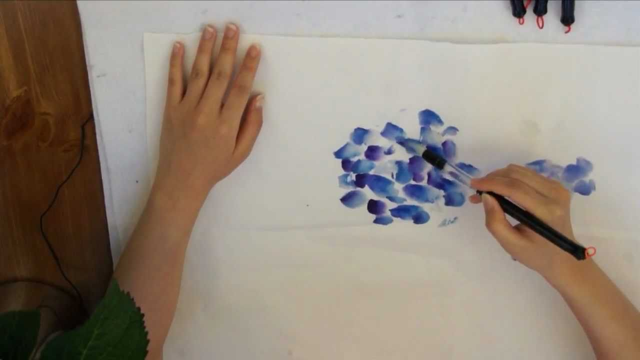 1280x720 Blue Hydrangea Watercolor Doodle On Cotton Xuan Rice Paper By Amy