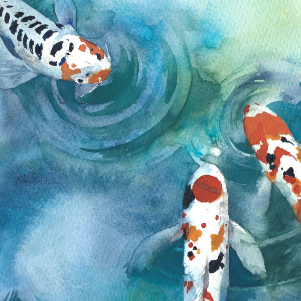 600x600 Koi Fish In A Pond Ver2 Chinese Watercolor Style Art